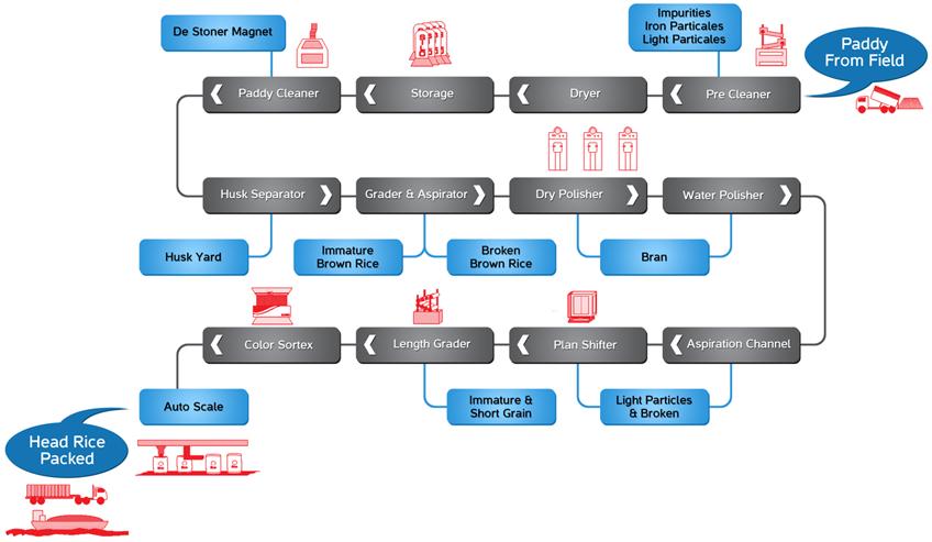 IRRI9 Rice Milling Chart